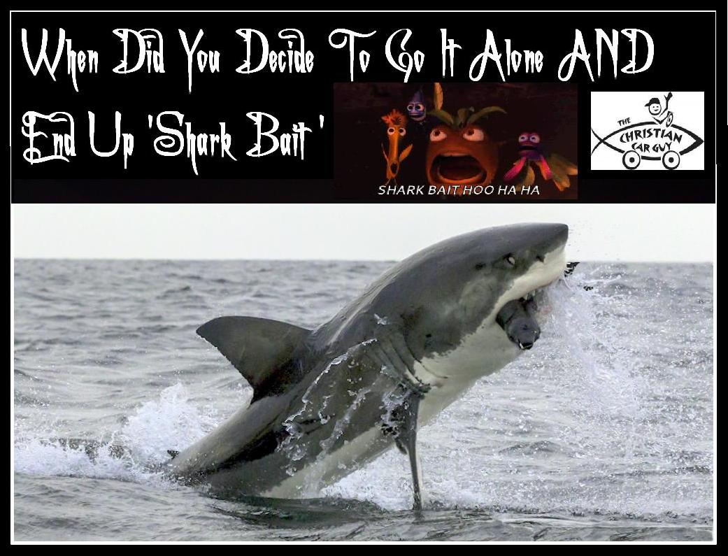 When Did You Deside To Go It Alone and End Up 'SHARK BAIT'