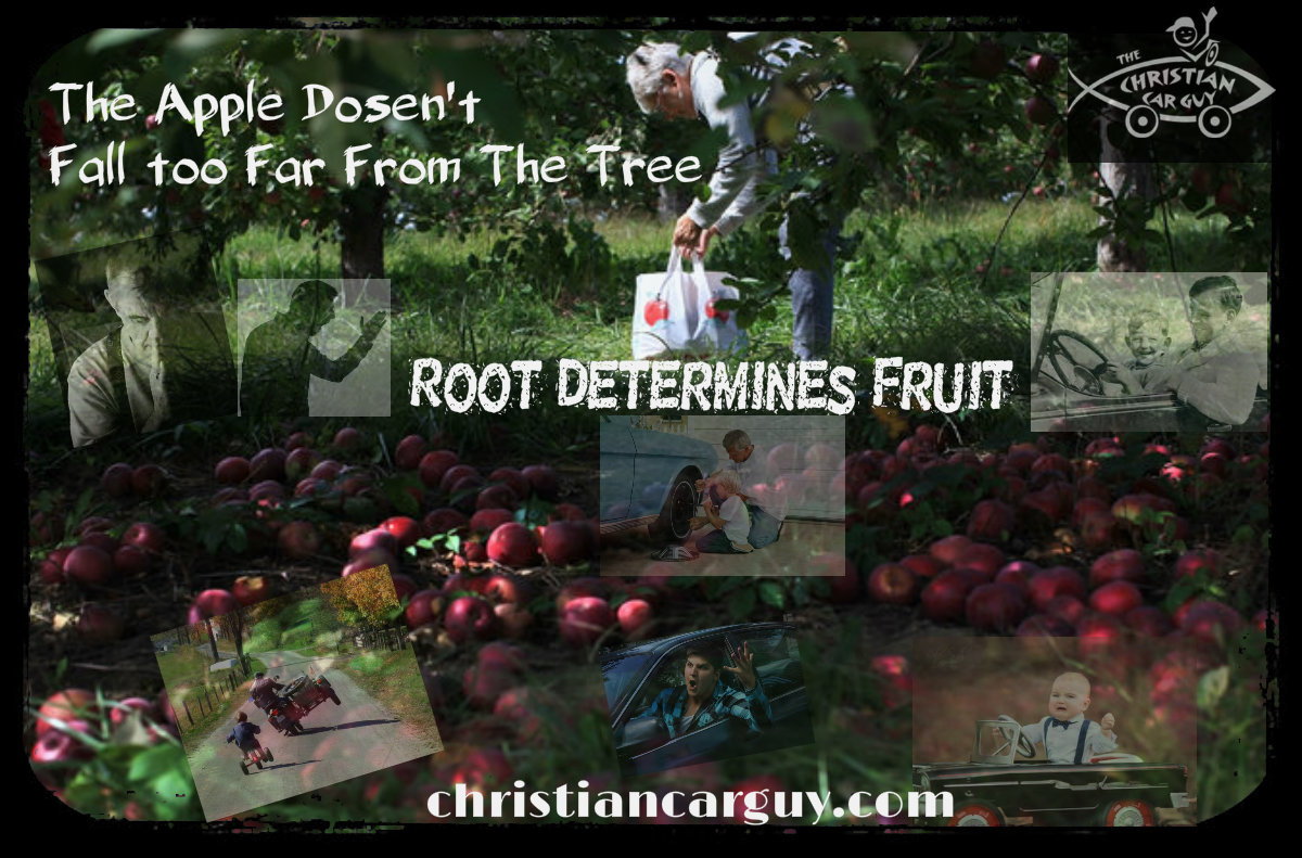 Root Defines Fruit